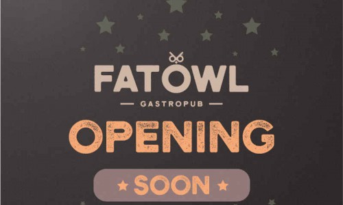 Launch of Fat Owl Gastro Pub Image 5